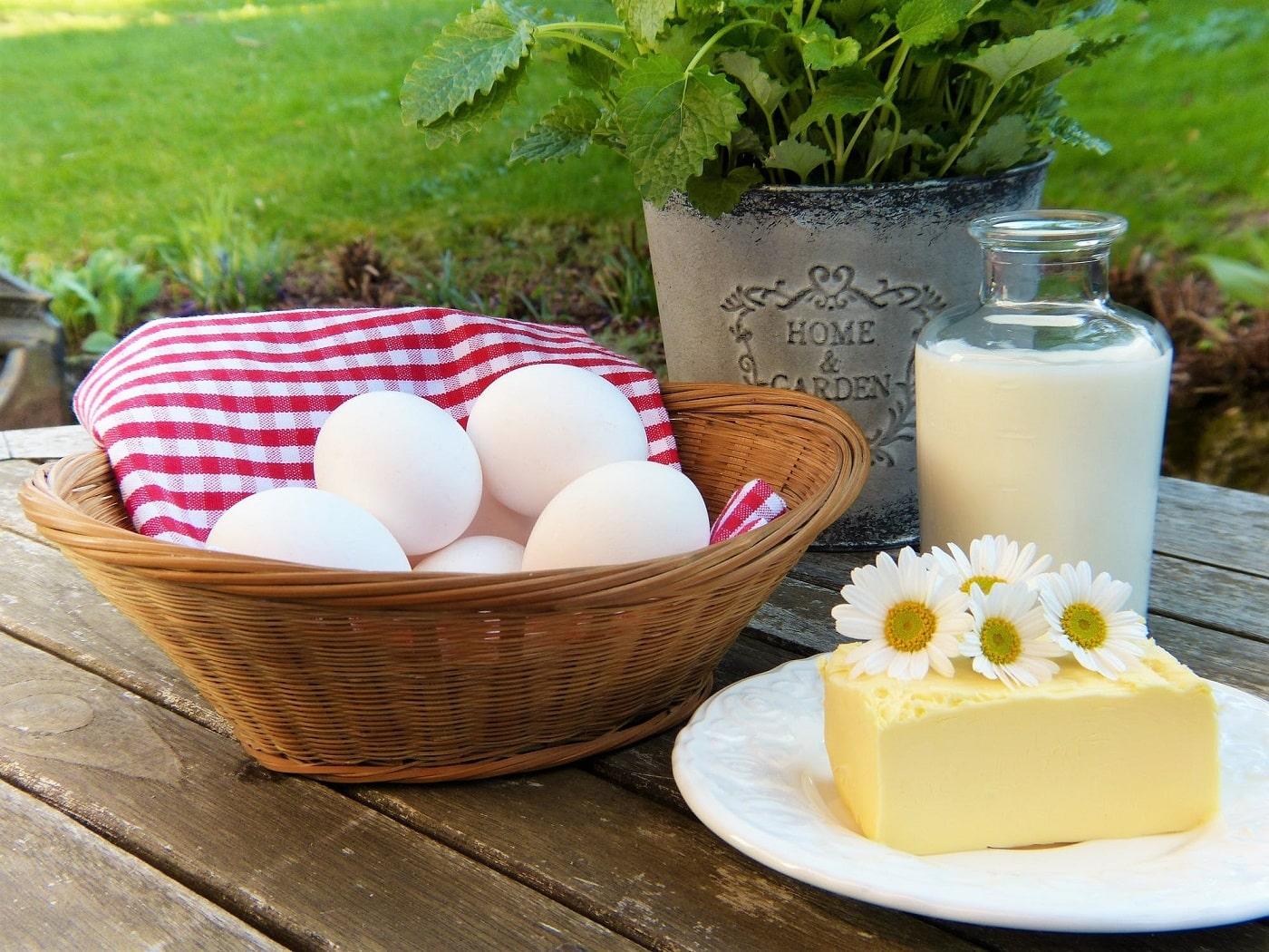 מוצרי חלב שונים בייצים גבינה וחלב בגינה