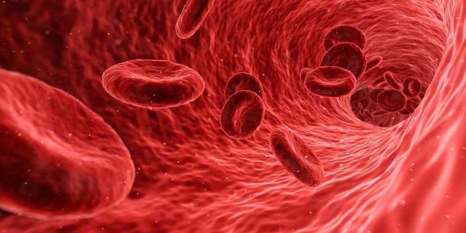 סיבות לנשירת שיער אצל נשים חומציות בדם