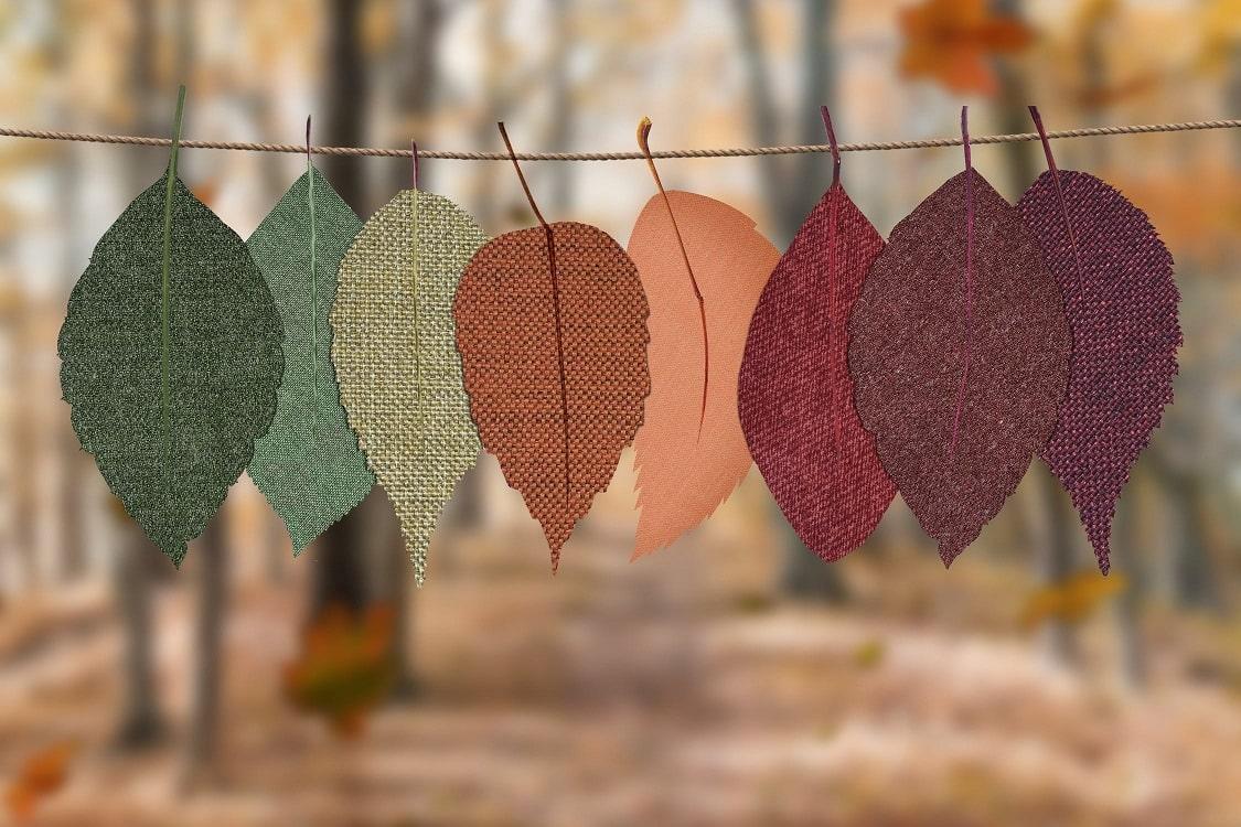 עלים בצבעים שונים תלויים על חוט אילוסטרציה של שינוי עונות