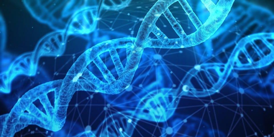 תמונה של קוד DNA