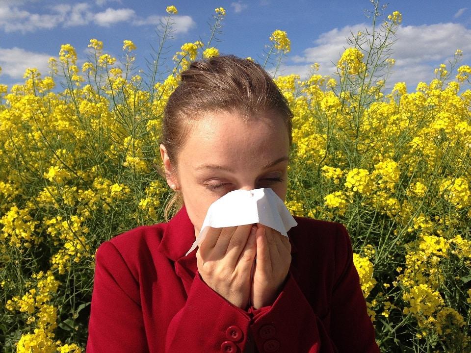 בחורה מתעטשת בגלל אלרגיה