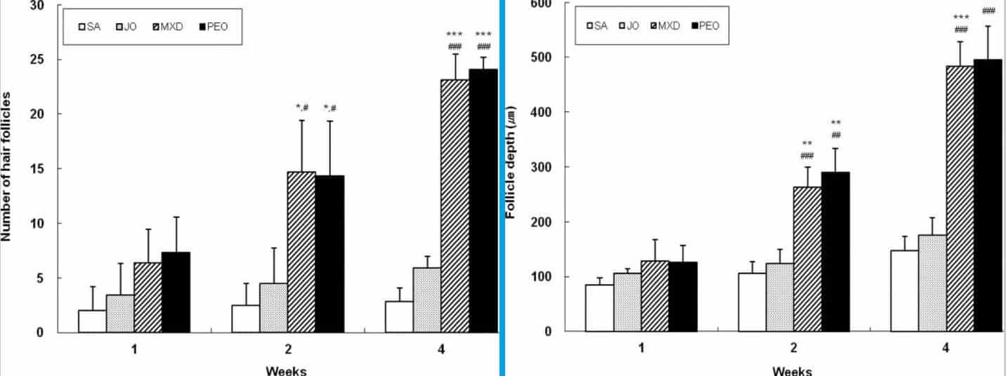 השוואה של תוצאות הניסוי עם שמן מנטה