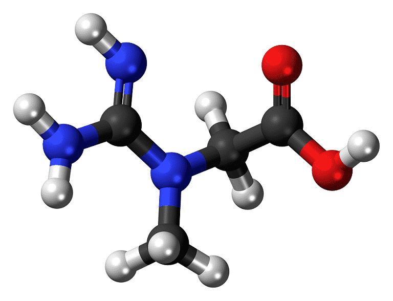 מולקולת קריאטין